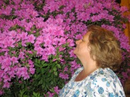 Stop and smell the azaleas