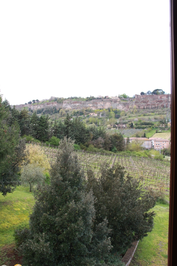 view of Orvieto from our B&B