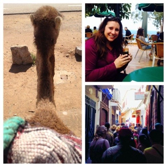 A collage of my Morocco experience